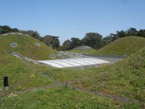 green-roof_640