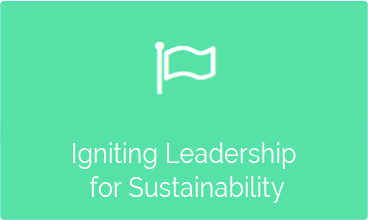 Igniting Leadership for Sustainability