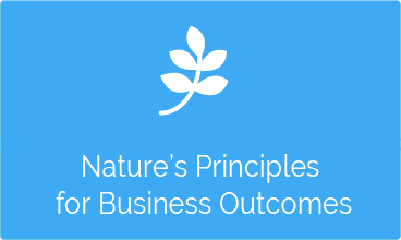 Nature's Principles for Business Outcomes