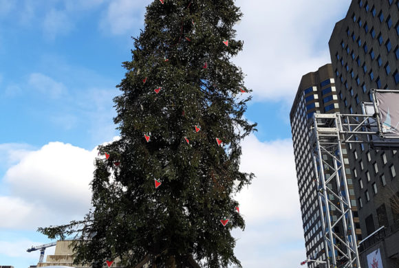 Montreal's Despised Christmas Tree; Image and Authenticity